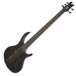 Epiphone Toby Deluxe-V Bass Ebony Black