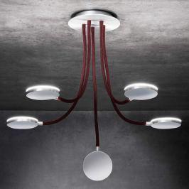 Holtkötter Flex D5 - LED-Deckenleuchte, rot, 5flam