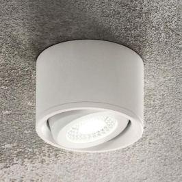 Schwenkbarer Kopf - LED-Downlight Anzio, weiß