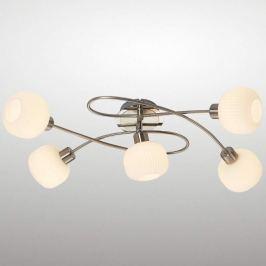 5-flammige LED Deckenleuchte Anica