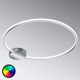 Ringförmige LED-Deckenlampe Dragon m. Farbwechsel