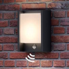 Mit Bewegungsmelder - LED-Außenwandleuchte Arbour