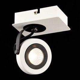 Magnetar - moderner LED-Deckenspot in Schwarz-Weiß