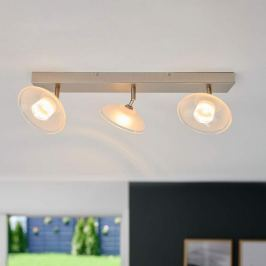 LED-Deckenlampe Melani m. verstellb. Glasschirmen