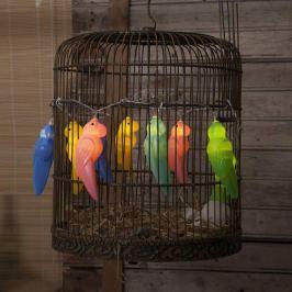 Bunte LED-Lichterkette Funlight im Vogel-Design