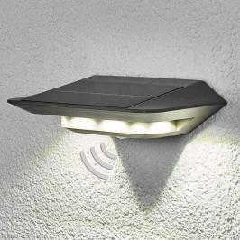 Mit Bewegungsmelder - Solar-Wandleuchte Ghost LED