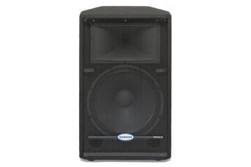 Samson RS15HD PA Speaker Cabinet
