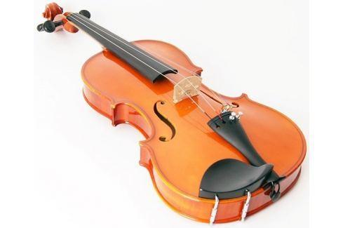 Strunal Schönbach 1750 4/4 Academy Violin